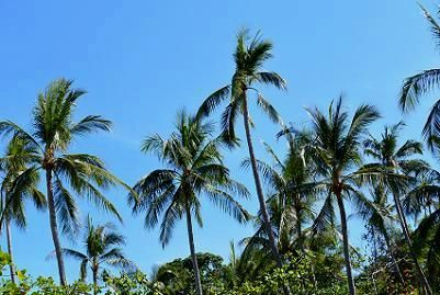 サムイ島シーラワディーのビーチ12