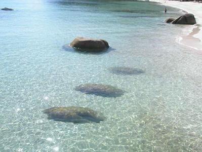 サムイ島のチャウエンビーチ01