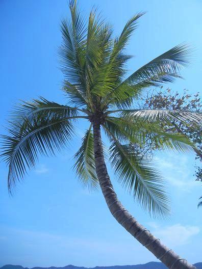 サムイ島カンダブリのビーチ13